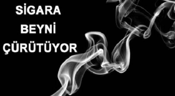 Sigara ve Beyin Damar Hastalıkları